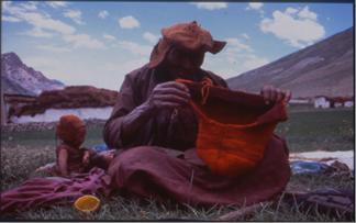 Science et peuples indigènes